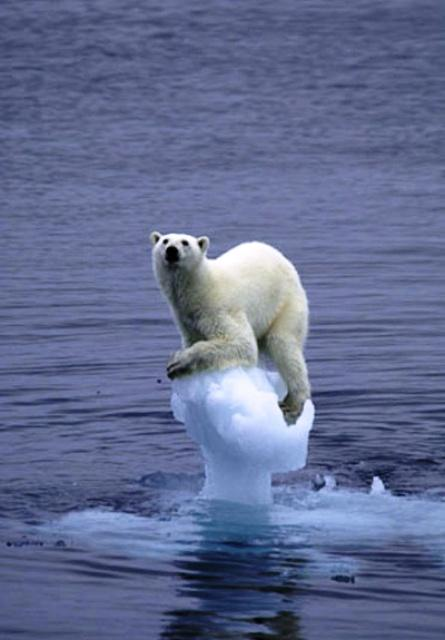 Global Warming Believers WHERE IS YOUR EVIDENCE?